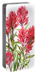 Indian Paintbrush Portable Battery Charger