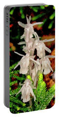 Indian Pipes On Club Moss Portable Battery Charger