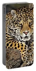 Jaguar Portrait Wildlife Rescue Portable Battery Charger