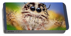 Jumping Spider Colonus Hesperus Portable Battery Charger
