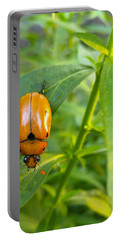 June Bug Portable Battery Charger