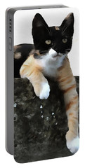 Just Chillin Tricolor Cat Portable Battery Charger