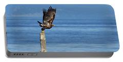 Juvenile Bald Eagle Taking Flight Portable Battery Charger