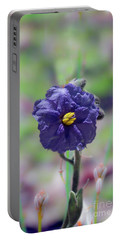 Portable Battery Charger featuring the photograph Kangaroo Apple, Solanum Aviculare by Elaine Teague