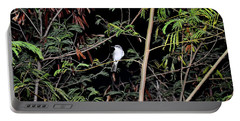Kingbird At Night Portable Battery Charger