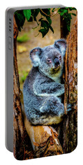 Koala Resting In Tree Portable Battery Charger