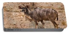 Kudu In The Kalahari Desert, Namibia Portable Battery Charger