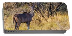 Kudu, Namibia Portable Battery Charger