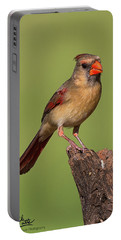 Lady Cardinal Portable Battery Charger