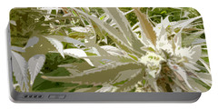 Portable Battery Charger featuring the photograph Ladyflower Hemp #1 by Ahma's Garden