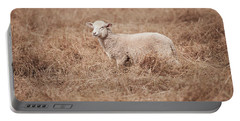Lamb Portable Battery Charger