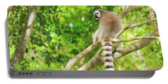 Lemur By Itself In A Tree During The Day. Portable Battery Charger