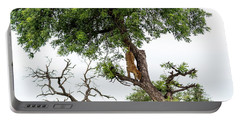 Leopard Descending A Tree Portable Battery Charger