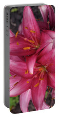 Lilixplosion - 1 Portable Battery Charger