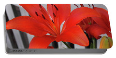Lilixplosion 8 Portable Battery Charger