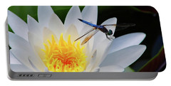 Lily And Dragonfly Portable Battery Charger