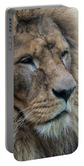 Portable Battery Charger featuring the photograph Lion by Anjo Ten Kate