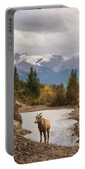 Little Bighorn Portable Battery Charger