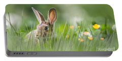 Little Hare Portable Battery Charger
