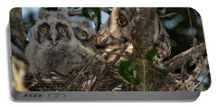 Long-eared Owl And Owlets Portable Battery Charger