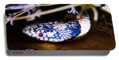 Portable Battery Charger featuring the photograph Longnosed Snake Portrait by Judy Kennedy