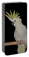 Portable Battery Charger featuring the photograph Lucy by Debbie Stahre
