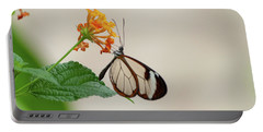 Portable Battery Charger featuring the photograph Made Of Glass by Anjo Ten Kate