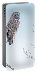Majestic Great Gray Owl Portable Battery Charger