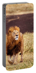 Majesty Portable Battery Charger