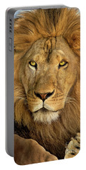 Male African Lion Portrait Wildlife Rescue Portable Battery Charger
