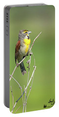 Male Dickcissel Portable Battery Charger