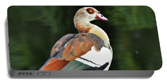 Male Egyptian Goose Portable Battery Charger