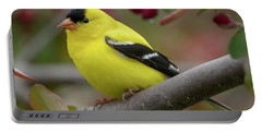 Male Goldfinch Checking Me Out Portable Battery Charger