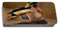 Portable Battery Charger featuring the painting Male Mallard - Painted by Ericamaxine Price
