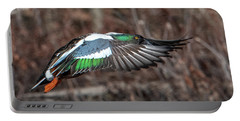Male Northern Shoveler In Flight Dwf0182 Portable Battery Charger