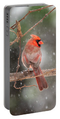 Male Red Cardinal Snowstorm Portable Battery Charger