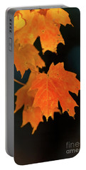 Maple-1 Portable Battery Charger