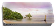 Mayan Sea Portable Battery Charger