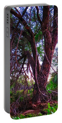 Portable Battery Charger featuring the photograph Mesquite By The Wash by Judy Kennedy