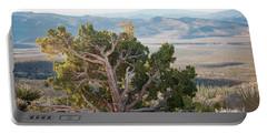 Mesquite In Nevada Desert Portable Battery Charger