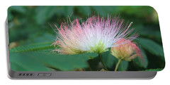 Mimosa Tree In Bloom Portable Battery Charger