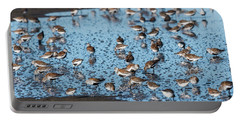 Mixed Flock Of Shorebirds Portable Battery Charger