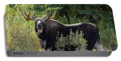 Moose Chew Portable Battery Charger