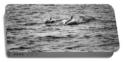 Mother Dolphin And Calf Swimming In Moreton Bay. Black And White Portable Battery Charger