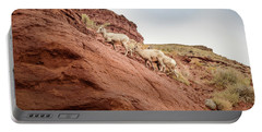 Mountain Goats Portable Battery Charger