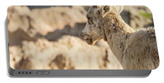 Mountain Sheep In Badlands National Park Portable Battery Charger