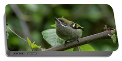 Moustached Tinkerbird Portable Battery Charger