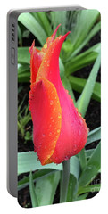 Multicolored Tulip Portable Battery Charger