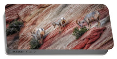 Portable Battery Charger featuring the photograph Nimble Mountain Goats 5694 by Donald Brown