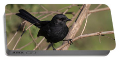 Northern Black Flycatcher Portable Battery Charger